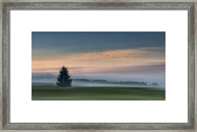 Dance In The Clouds Framed Print by Shenshen Dou