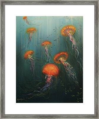 Dance Of The Jellyfish Framed Print by Tom Shropshire