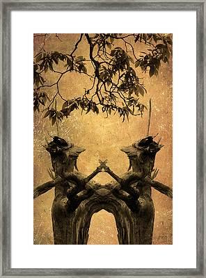 Dancing Trees Framed Print by Dave Gordon