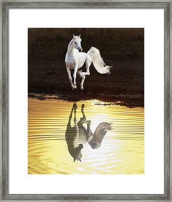 Dancing With Myself Framed Print by Ron  McGinnis