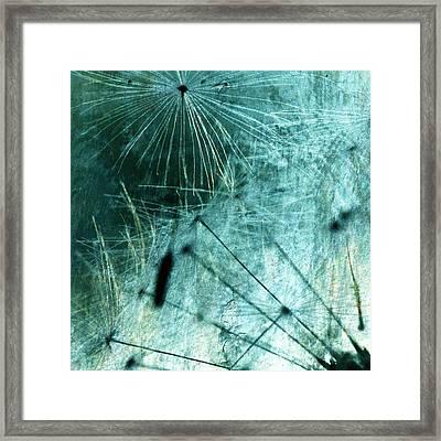 Dandelion Art 8 Framed Print by Falko Follert