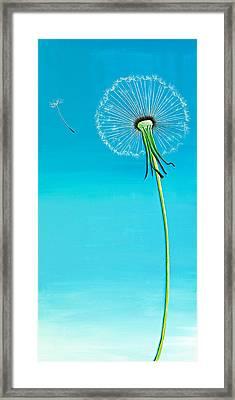 Dandelion Framed Print by David Junod