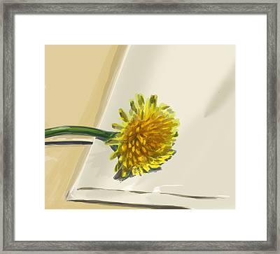 Dandelion Framed Print by Jamie Lindenmeier