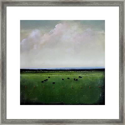 Dandelion Pastures Framed Print by Toni Grote