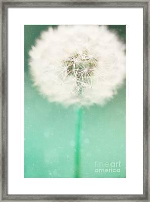 Dandelion Seed Framed Print by Kim Fearheiley