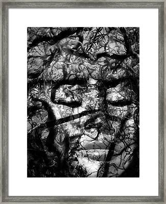 Daphne Sacrifice Framed Print by Angelina Vick