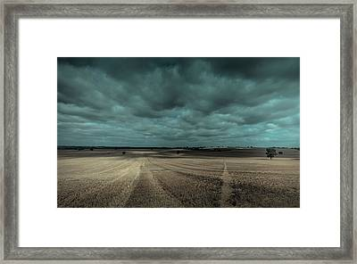 Dappled Framed Print by Chris Fletcher