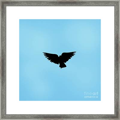 Dark Angel Framed Print by Linsey Williams