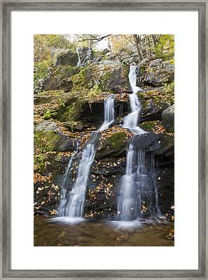 Dark Hollow Falls Shenandoah National Park Framed Print by Pierre Leclerc Photography