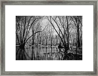 Dark Reflections Framed Print by Colleen Kammerer