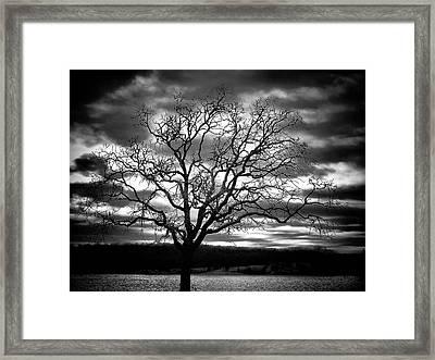 Dark Side Framed Print by Karen M Scovill
