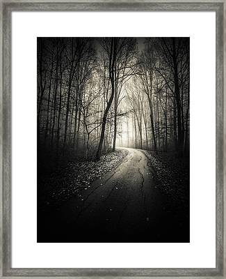 Darkwood Framed Print by Silvijo Selman