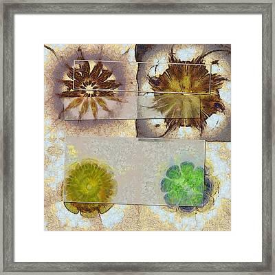 Daswen Speculation Flower  Id 16165-214343-66581 Framed Print by S Lurk