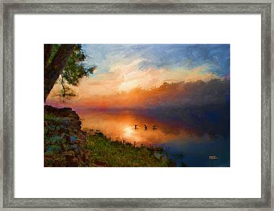 Dawn Flight Framed Print by Shirley Dawson