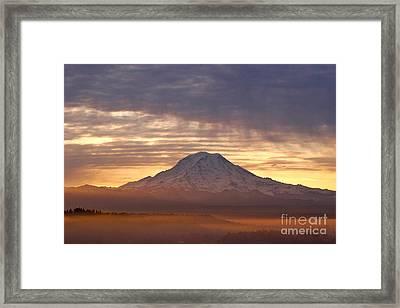 Dawn Mist About Mount Rainier Framed Print by Sean Griffin