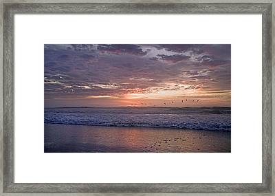 Dawn Patrol Framed Print by Betsy C Knapp