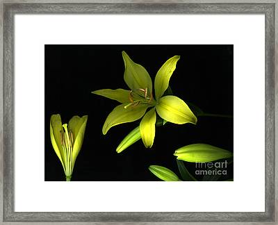Day And Night Framed Print by Christian Slanec