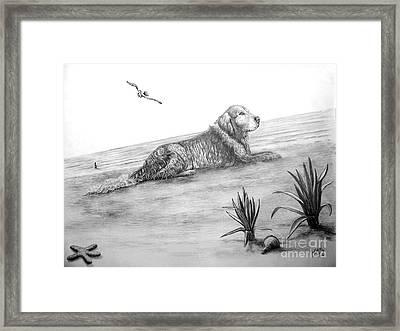 Day At The Beach Framed Print by Murphy Elliott