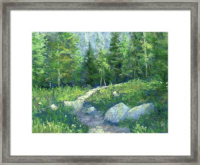 Day Hike Framed Print by David King