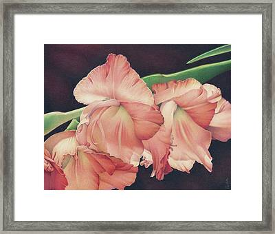 Daylights Last Dance Framed Print by Amy S Turner
