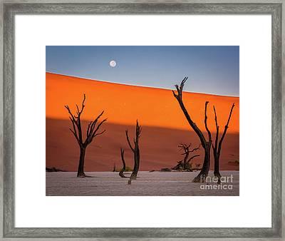 Deadvlei Full Moon Framed Print by Inge Johnsson