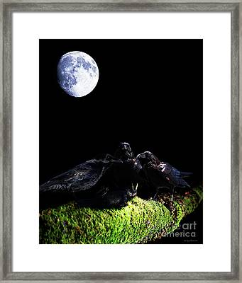 Death Of A Young Raven Framed Print by Wingsdomain Art and Photography