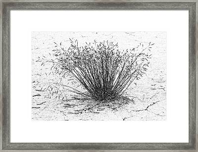 Death Valley National Park - Hot - Dry - Beautiful Framed Print by Christine Till