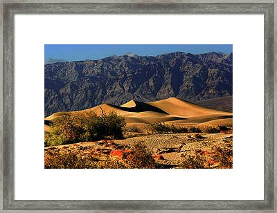 Death Valley's Mesquite Flat Sand Dunes Framed Print by Christine Till
