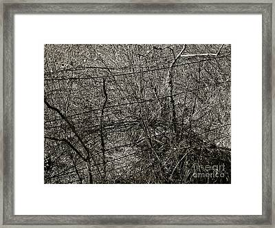 Deceit  Framed Print by Laura Star