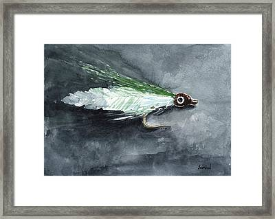 Deceiver Fishing Fly Framed Print by Sean Seal