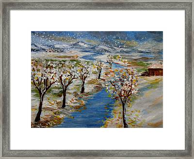 December Framed Print by Constantinos Charalampopoulos