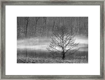 December Mist - D009785-bw Framed Print by Daniel Dempster