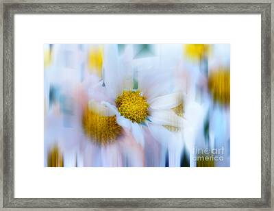 Decorative Io Framed Print by SK Pfphotography