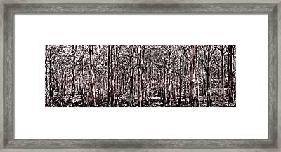 Deep Forest Sepia Framed Print by Az Jackson