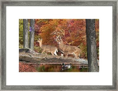 Deer Art - Deer Creek Whitetails Framed Print by Dale Kunkel Art