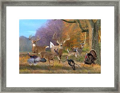 Deer Art - Field Of Dreams Framed Print by Dale Kunkel Art