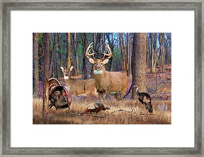 Deer Art - Heartthrob Framed Print by Dale Kunkel Art