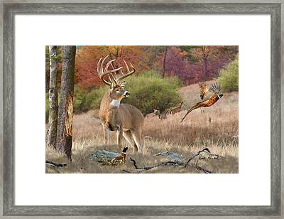 Deer Art - His Name Is Prince Framed Print by Dale Kunkel Art
