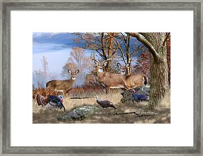Deer Art - November Whitetails Framed Print by Dale Kunkel Art