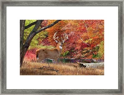 Deer Art Print - Megatron Framed Print by Dale Kunkel Art