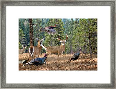 Deer Art - The Gathering Framed Print by Dale Kunkel Art