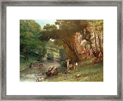 Deer By A River Framed Print by Gustave Courbet