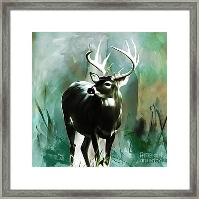Deer  Framed Print by Gull G