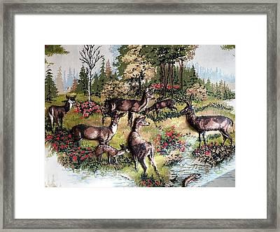 Deers In Woods Framed Print by Joseph Frank Baraba