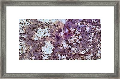 Defecates Rhythm  Id 16103-042807-67330 Framed Print by S Lurk
