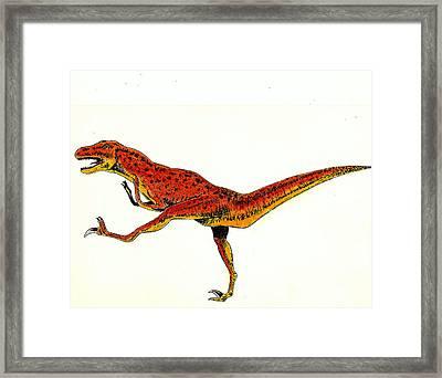 Deinonychus Framed Print by Michael Vigliotti