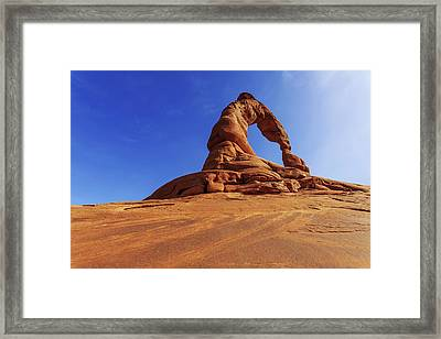 Delicate Perspective Framed Print by Chad Dutson