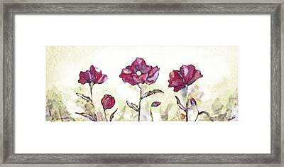 Delicate Poppy I Framed Print by Shadia Zayed