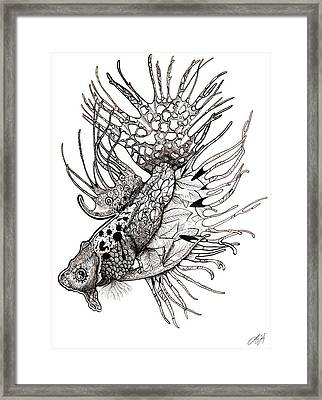 Delicate  Framed Print by Sydney Gregory