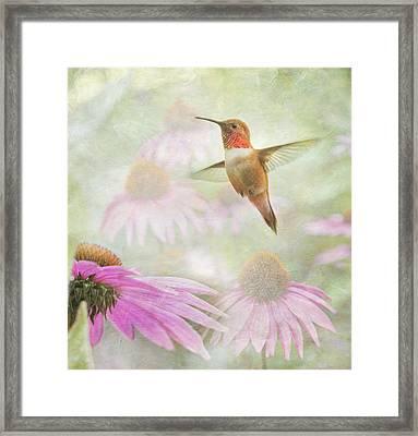 Delight In A Flower Garden Framed Print by Angie Vogel